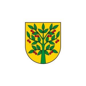 Sesja Rady Gminy Wiśniew – 27.01.2021